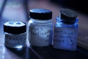 Various Ingredients. Photo credits: Ella Nicholas French